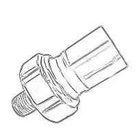 Bulbos de Aceite